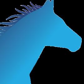 Site icon for Bluegrass Activist Alliance