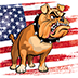 Site icon for Patriot Watchdog