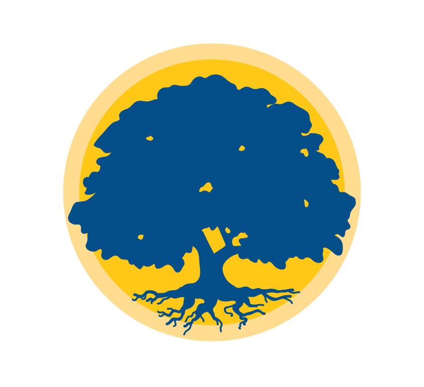 Site icon for A Stronger Louisiana