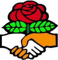Site icon for Houston DSA